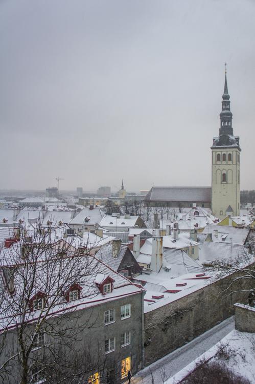 Daytrip from Helsinki: Visiting Enchanting Tallinn