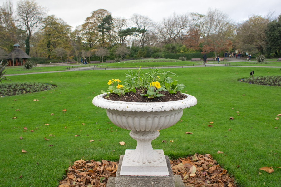 One day in Dublin? See the Highlights with these Tips! || City Guide by The Travel Tester || #CityGuide #Ireland #Dublin #VisitIreland #VisitDublin #24HGuide #Park