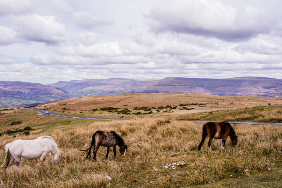 Brecon Beacons National Park: Ice Age Beauty South Wales (Great Day Trip from Cardiff) | The Travel Tester