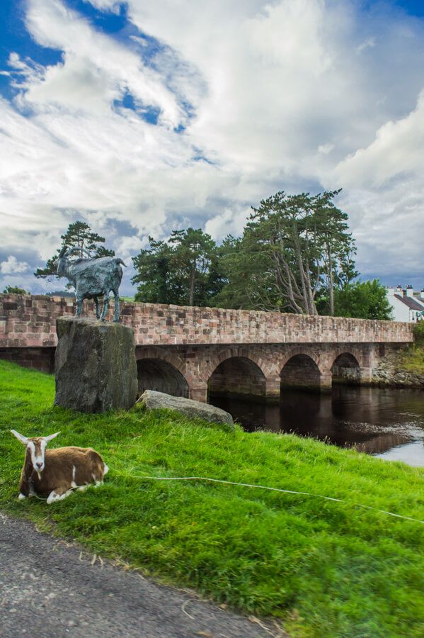 25 Photos That Make You Want to Visit Northern Ireland Today! || The Travel Tester