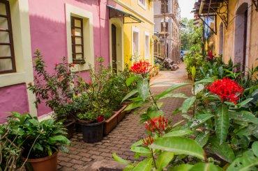 35 Doors and Windows in Panjim's Latin Quarter Fontainhas - Goa, India    The Travel Tester