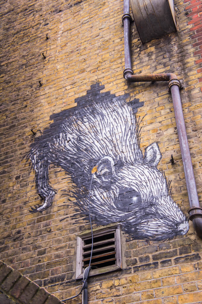 Roa - 10x street artists from London you don't want to miss || The Travel Tester